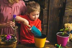 Concetto del bambino Il bambino impara la piantatura del fiore in vaso con suolo Piante di impregnazione del bambino Bambino ador immagini stock