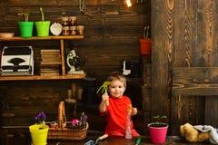 Concetto del bambino Piccolo bambino con gli strumenti di giardinaggio Bambino sveglio nella tettoia del giardino Giardiniere fel fotografie stock libere da diritti