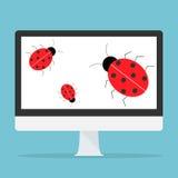 Concetto del bug Fotografia Stock
