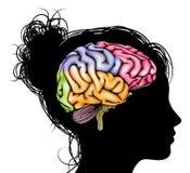 Concetto del cervello della donna Immagine Stock