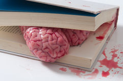 Concetto del cervello dello studio su un libro Fotografie Stock Libere da Diritti