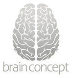 Concetto del cervello di Hhuman Fotografia Stock