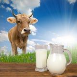 Concetto del latte Immagine Stock Libera da Diritti