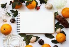 Concetto del modello con i mandarini e le pigne Fotografie Stock Libere da Diritti