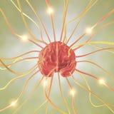 Concetto del neurone del cervello Fotografia Stock Libera da Diritti