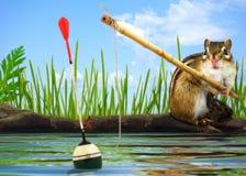 Concetto del pescatore Immagini Stock