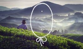 Concetto del raccolto del tè del raccolto di agricoltura della struttura della corda Immagine Stock
