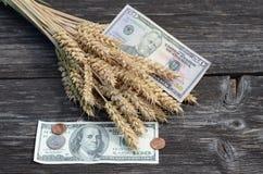 Concetto del raccolto di agricoltura con i dollari e le orecchie del grano Immagini Stock Libere da Diritti