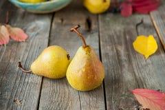 Concetto del raccolto di autunno - pere gialle organiche mature fresche con le gocce di acqua sulla tavola di legno rustica, fond Fotografie Stock