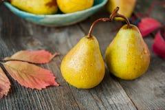Concetto del raccolto di autunno - pere gialle organiche mature fresche con le gocce di acqua sulla tavola di legno rustica, fond Immagine Stock