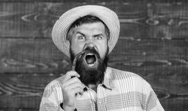 Concetto del raccolto del pepe L'agricoltore rustico in cappello di paglia gradisce il gusto piccante Agricoltore che presenta pe fotografia stock