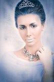 Concetto del ritratto della regina della neve Fotografie Stock Libere da Diritti