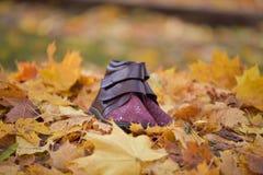 Concetto del tempo di autunno Fotografia Stock