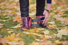 Concetto del tempo di autunno Immagine Stock