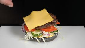 Concetto dell'alimento del movimento lento Cuoco unico che produce hamburger Primo piano Processo di cottura del menu del ristora video d archivio