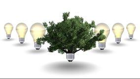 Concetto dell'energia rinnovabile, simbolo verde di energia Fotografie Stock Libere da Diritti