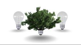 Concetto dell'energia rinnovabile, simbolo verde di energia Fotografia Stock