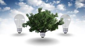 Concetto dell'energia rinnovabile, simbolo verde di energia Immagini Stock Libere da Diritti