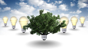 Concetto dell'energia rinnovabile, simbolo verde di energia Fotografie Stock
