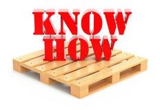 Concetto dell'esportazione di knowhow Fotografia Stock Libera da Diritti