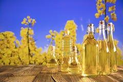 Concetto dell'olio di colza Fotografia Stock Libera da Diritti