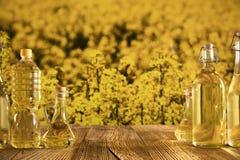 Concetto dell'olio di colza Fotografie Stock Libere da Diritti