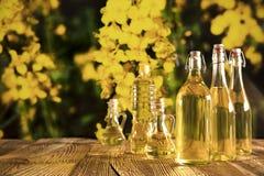 Concetto dell'olio di colza Immagine Stock Libera da Diritti