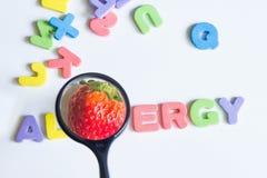 Concetto della frutta della fragola dell'alimento di allergia con le lettere e la lente Fotografia Stock