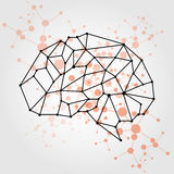 Concetto della maglia del cervello di vettore dell'essere umano DES dell'illustrazione Fotografia Stock Libera da Diritti