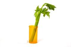 Concetto della medicina alternativa Fotografie Stock