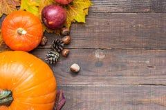 Concetto della natura di autunno frutta e verdure di autunno su fondo di legno Immagine Stock