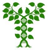 Concetto della pianta del DNA della doppia elica illustrazione vettoriale