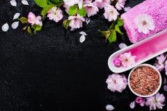 Concetto della stazione termale con i fiori della mandorla Immagine Stock