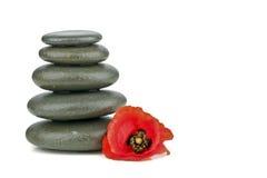 Concetto della stazione termale con le pietre ed il fiore di zen Fotografia Stock