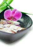 Concetto della stazione termale: orchidea, bambù e coperture viola Fotografia Stock