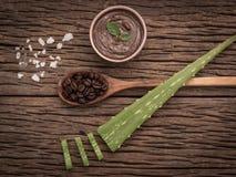 Concetto della stazione termale su fondo di legno, benefici stupefacenti di aloe Vera per capelli, pelle e perdita di peso Un'alt Fotografia Stock