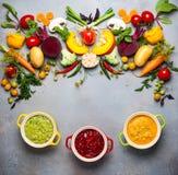 Concetto delle minestre di verdura sane Immagine Stock