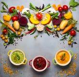 Concetto delle minestre di verdura sane Fotografia Stock Libera da Diritti