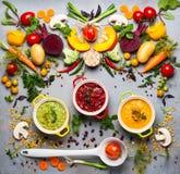Concetto delle minestre di verdura sane Fotografie Stock Libere da Diritti