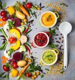 Concetto delle minestre di verdura sane Fotografia Stock