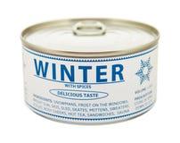 Concetto delle stagioni. Inverno. Barattolo di latta. Immagine Stock Libera da Diritti