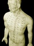 Concetto di agopuntura Fotografia Stock