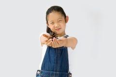 Concetto di agricoltura biologica, agricoltore asiatico del bambino, su fondo bianco Fotografia Stock