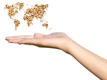 Concetto di agricoltura della tenuta della mano della ragazza Immagini Stock Libere da Diritti