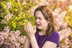 Concetto di allergia del polline La giovane donna sta andando starnutire fotografia stock libera da diritti