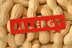 Concetto di allergia dell'arachide Fotografia Stock Libera da Diritti