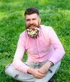 Concetto di allergia della primavera Pantaloni a vita bassa con i sembrare delle margherite felici L'uomo barbuto con i fiori del Immagine Stock Libera da Diritti