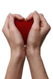 Concetto di amore. tenuta del cuore rosso in mani Fotografia Stock