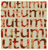 Concetto di autunno - lettere non separate! Illustrazione Vettoriale