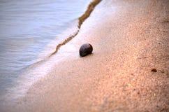 Concetto di avventura del viaggiatore del mare - rope al pilastro del tramonto Fotografia Stock Libera da Diritti